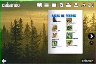 http://es.calameo.com/read/0001656801e8f57d4d0bd