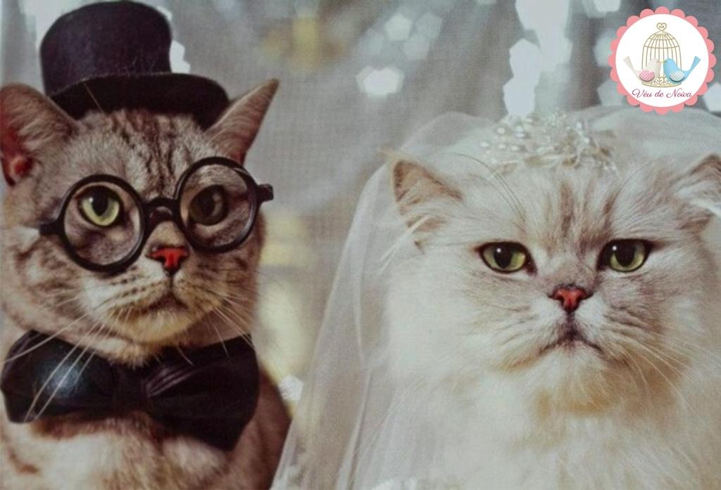 Animais no Casamento