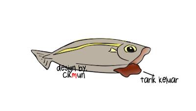 tutorial, siang ikan, mudah, cara, siang, ikan, doodle,