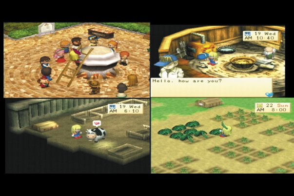 hmbg_g__3_ screenshot_large harvest moon back to nature (bahasa indonesia) (epsx) everything 06,Harvest Moon Meme