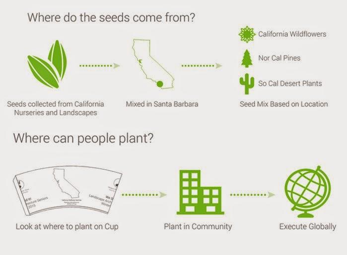 Taza Biodegradable que Repone la Flora
