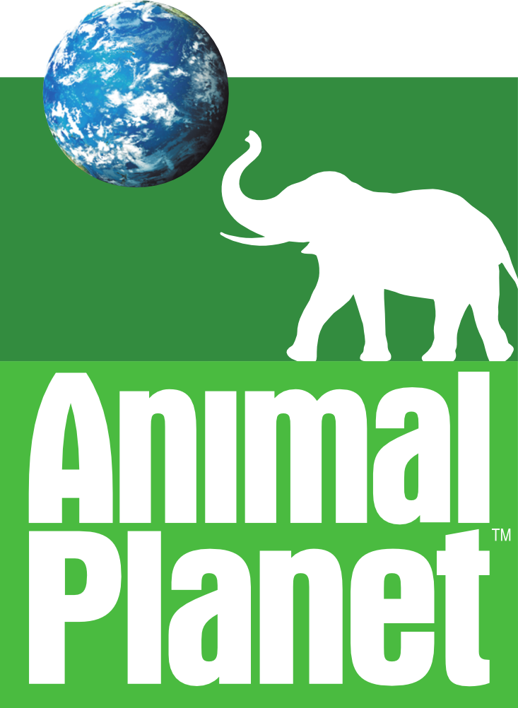 Animal Planet Live Channel - loytv