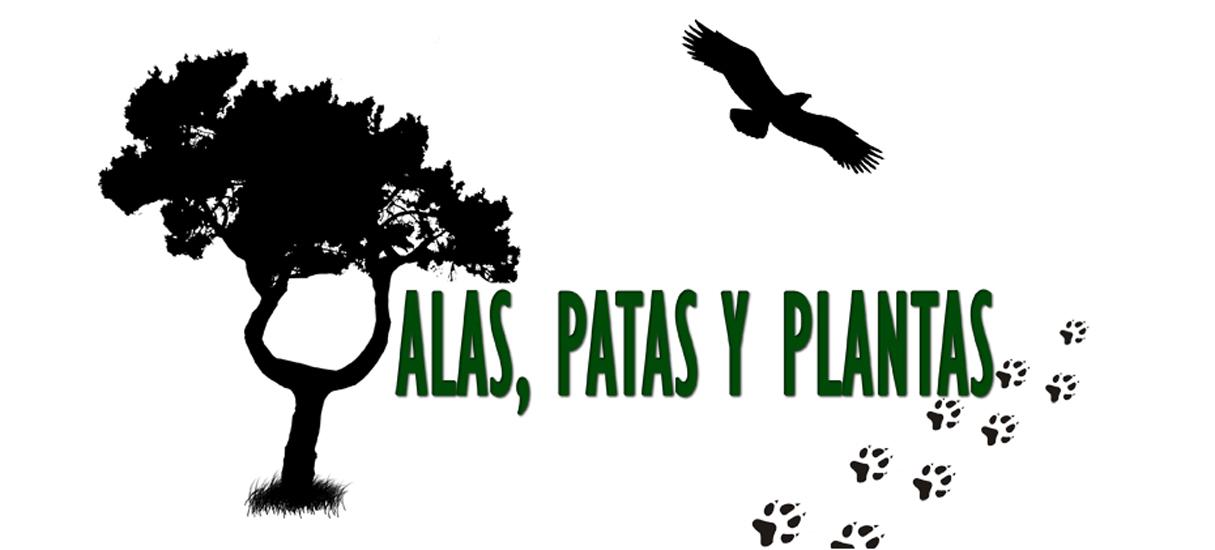 alas, patas y plantas