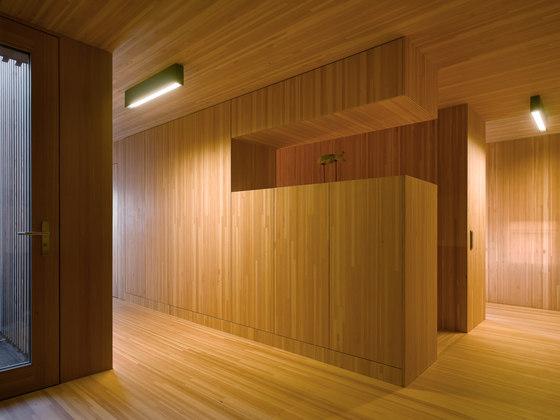 Un n cleo de madera envuelto por una c scara de hormig n for Terminaciones de techos interiores
