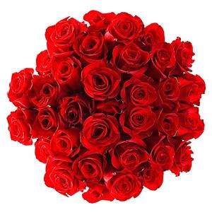 Buchet trandafiri roşii