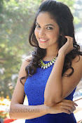 Ritu Varma Photos at Prema ishq kadhal movie success meet-thumbnail-8
