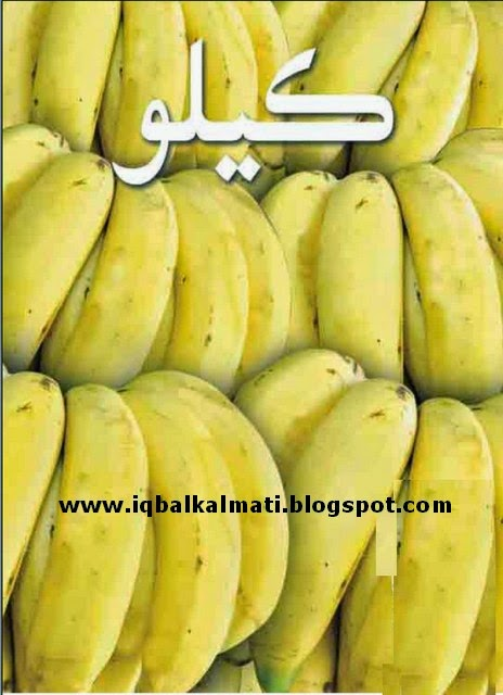Kele Jo Kasht (Banana Cultivation) book in sindhi