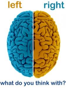left brain vs the right brain essay