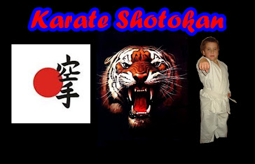Power Shotokan