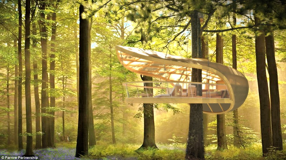 Biggest Treehouse In The World 2013 homes of the rich and famous: the world's coolest tree houses
