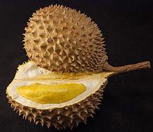 Makanan Khas Indonesia - Buah Asli Indonesia - durian