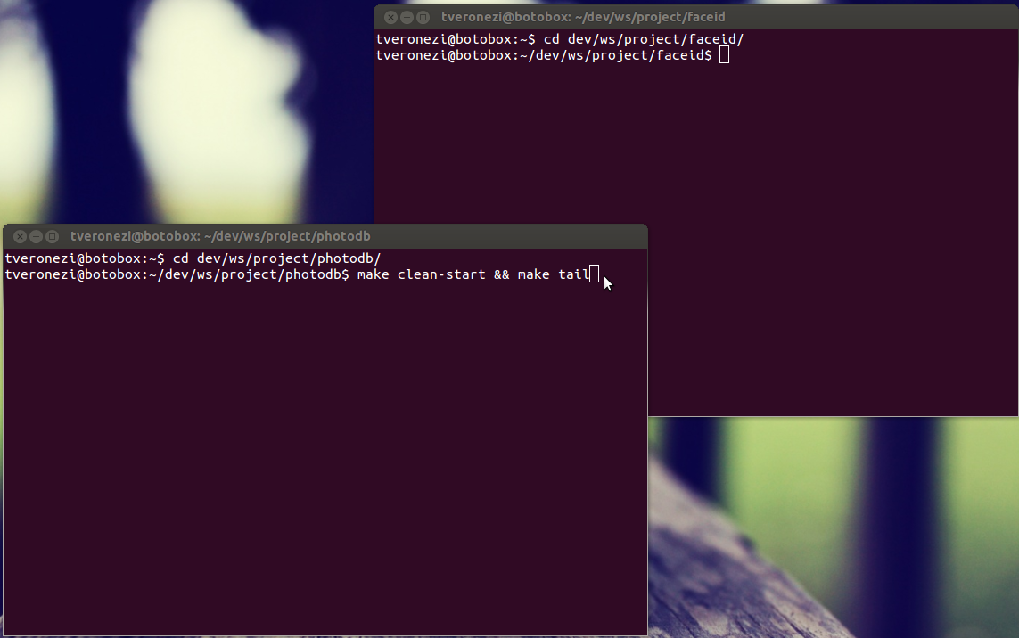 how to run javascript files in terminal