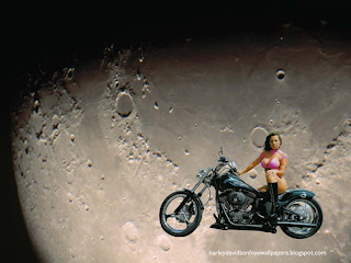 Harley Davidson Bikini Babes Wallpapers Big Bikes Beautiful Babes at Moon Light