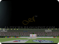 EA Cricket 2013 Screenshot 22