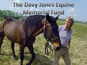 Davy Jones Equine Memorial Fund