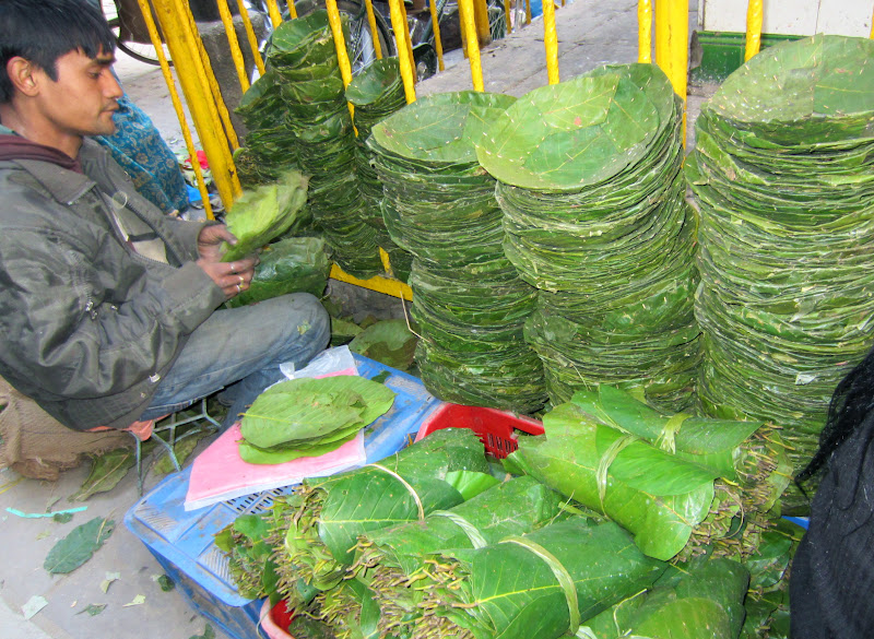 ... keeper in Asan Tole bazaar Kathmandu (a busy market for locals) is selling saal leaves. He is stitching together the leaves to create more leaf plates.  sc 1 st  Taste of Nepal & Taste of Nepal: Leaf Plates of Nepal (Tapari Duna Bota)