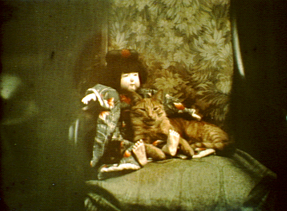 Cat lying on a chair next to a doll