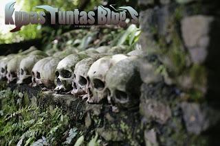 Kupas Tuntas Blog's II - [www.zootodays.blogspot.com]