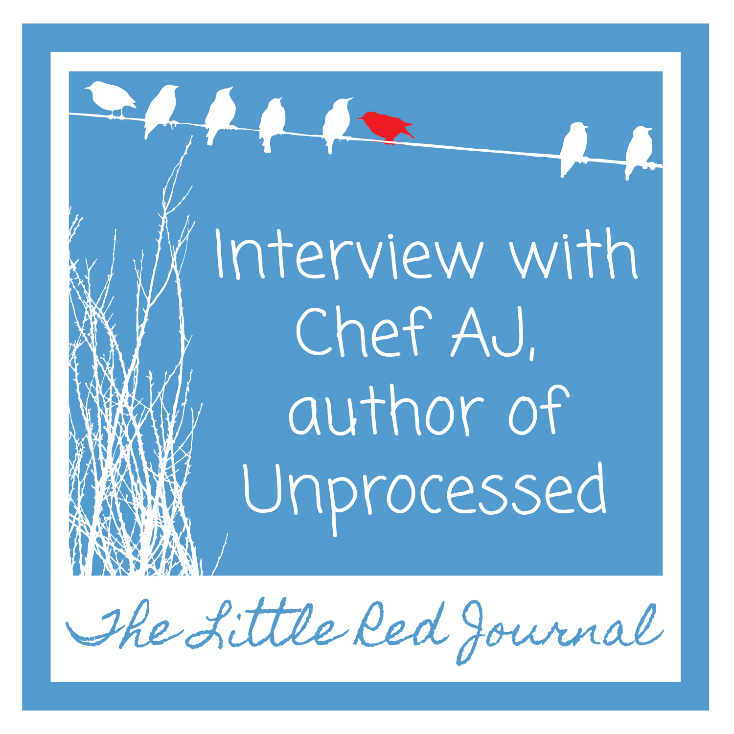 the little red journal interview chef aj author of unprocessed interview chef aj author of unprocessed