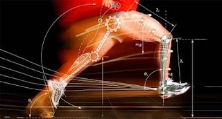 Cinesiologia para profissionais de Educação Física