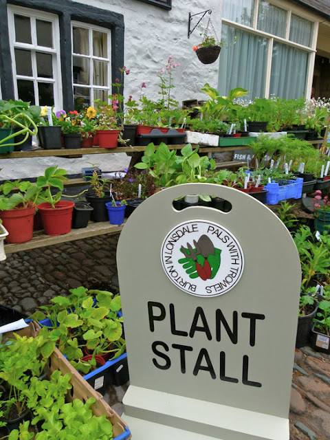 Burton in Lonsdale, Pals with Trowels, open gardens, plant stall