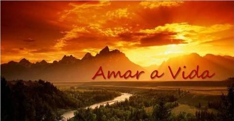 cropped-amar-a-vida1.jpg