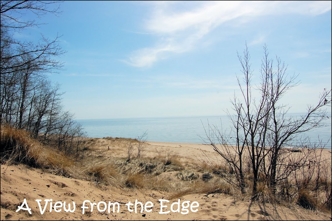 A View from the Edge