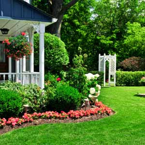 Home Garden Design Ideas