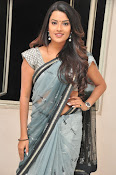Jyothi seth sizzling saree photos-thumbnail-11