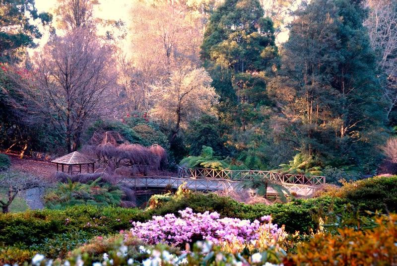 Travel Nishinomaru Garden