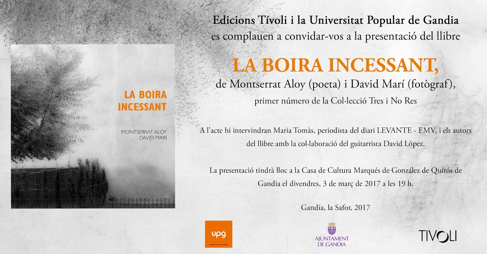 El meu segon llibre: UN LLIBRE!!