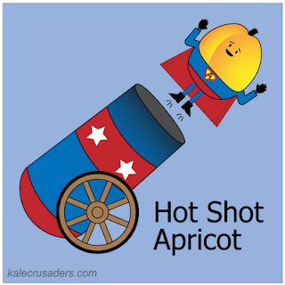 Hot Shot Apricot
