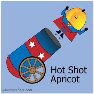 Hot Shot Apricot