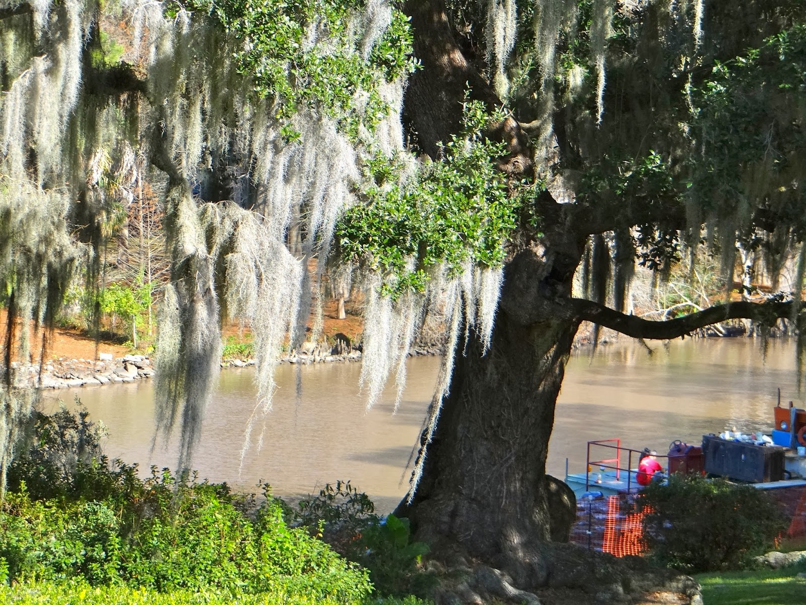 from the backyard a view of bayou teche with some dredging going on