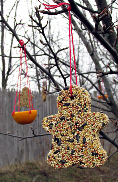 birdseed-ornament-and-orange-cup on a tree