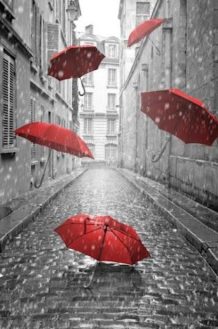 La casa de la lluvia