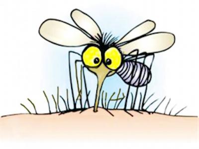 Disegno di zanzara che punge