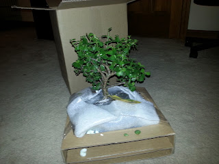 Bonsai Tree Packaging