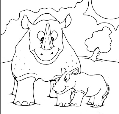rhino-animal