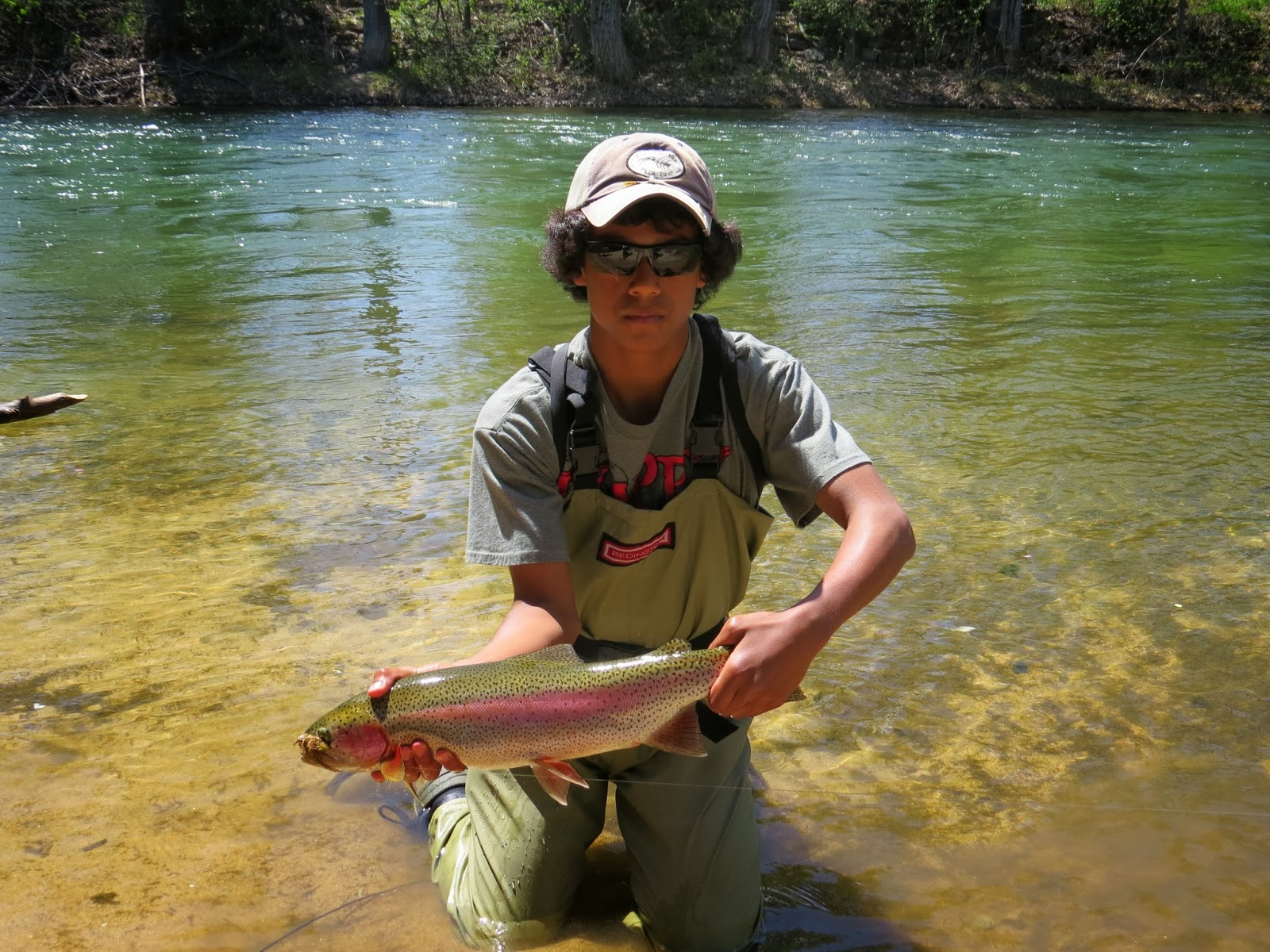 The quixotic angler wild trout thrive in the boise river for Boise river fishing