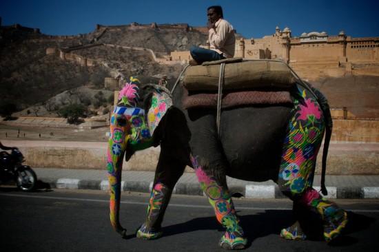 alitampouras.blogspot.gr - Παρέλαση ελεφάντων στην Ινδία