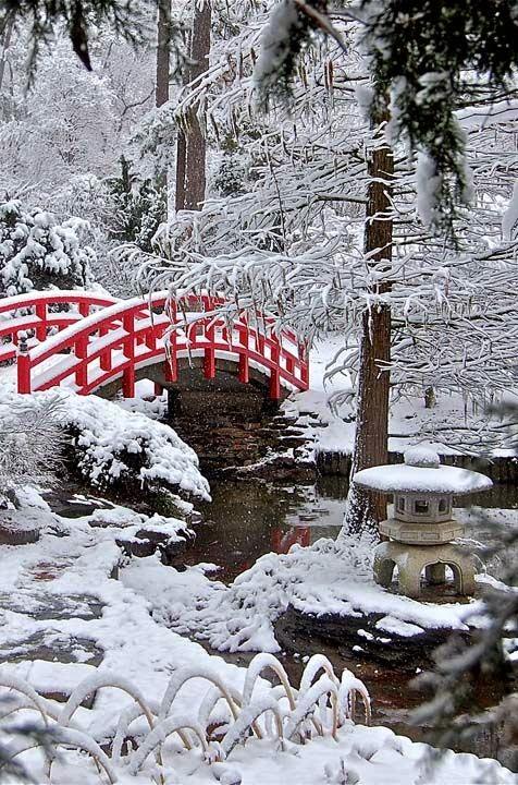 zen bahçesi, huzur, doğa, kış manzarası