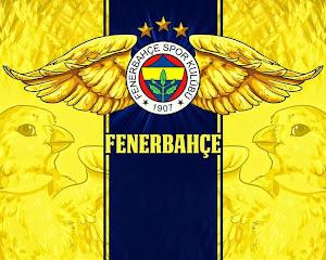 Fenerbahçe HD Masaüstü Resimleri