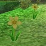 Toyflower screenshot harvest moon wonderful life