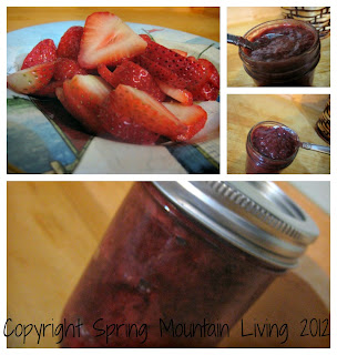 super simple sugarless strawberry jam at Spring Mountain Living