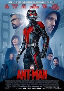 Phim Người Kiến - Ant-Man ()2015)