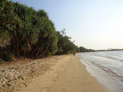Pantai Pailus yang asri