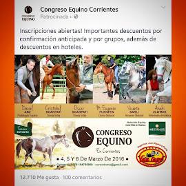 Congresos y Jornadas....