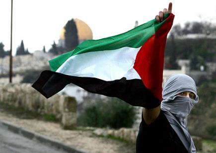 Save Palestin Konon!