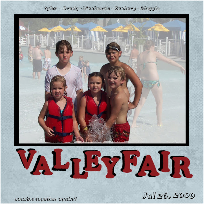 VALLEY FAIR